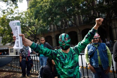 Marijuana activist in Mexico