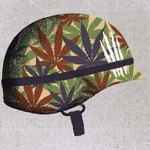 Congress Votes to Expand Cannabis Access to Vets
