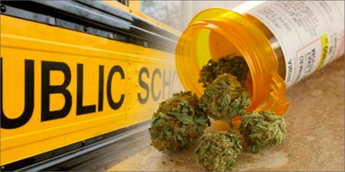 school medical marijuana