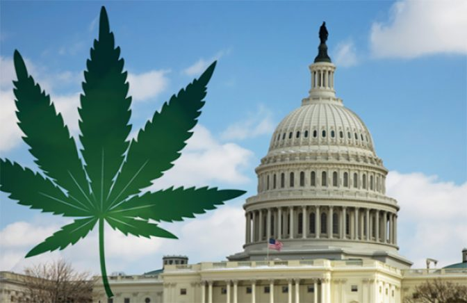congress and marijuana law reform