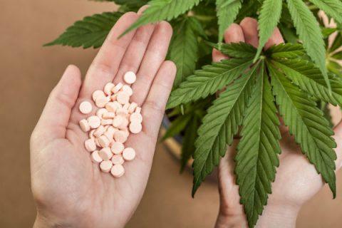 Cannabis Dosing Influences Pain Sensitivity Between Men and Women