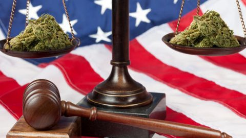 Amendment Bars Federal Prosecution of State-Compliant MMJ Providers