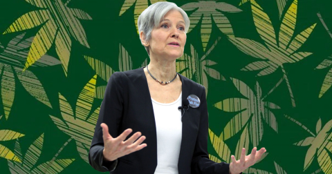 Third-Party Politics: The Greening of Jill Stein