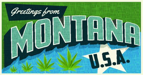 Medical Marijuana in Montana: Legend of the Fall