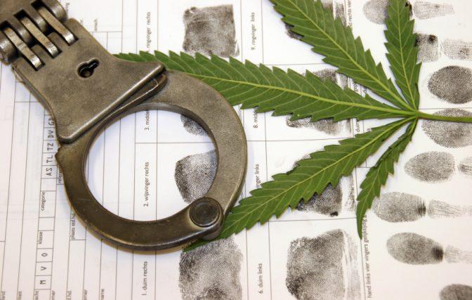 pot arrest