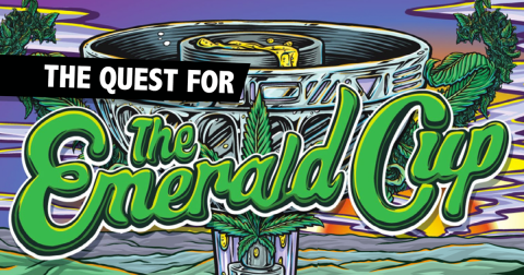 The Quest for the Emerald Cup