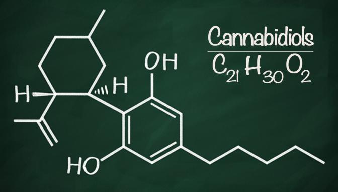 Canabidiol cannabinoids cbd freedom leaf cannabis marijuana chalkboard news
