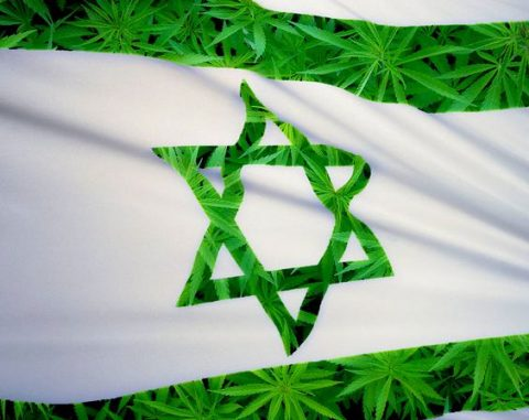 Israel Leading the Way in Canna-Research and Policy