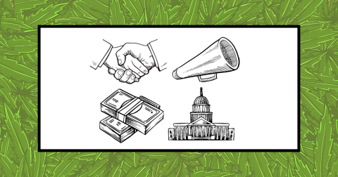 Freedom Leaf's Guide to Cannabis Activism