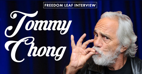 Freedom Leaf Exclusive Interview: Tommy Chong