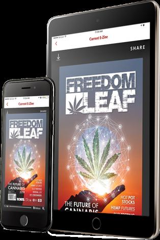 Magazine App Device Layout Face LeftSidebar