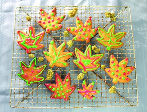 High Holidaze Pot Cookie Party