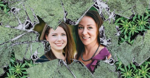 Review: 'Breaking the Grass Ceiling: Women, Weed & Business'