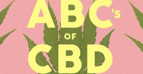 Review: Shira Adler's 'The ABC's of CBD'