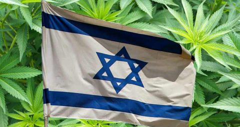 Netanyahu Shuts Down Israel's Cannabis Export Plan