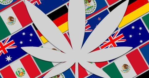 Cannabis Law Reform Developments Around the World