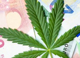 Marijuana Leaves And Money Bills