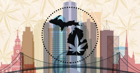 Michigan Voters Can Legalize It in November