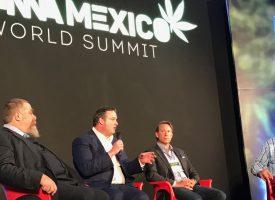 FoxCannaMexico2_FL