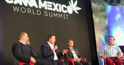 Canna Mexico World Summit Focuses on New Industry and Cartels