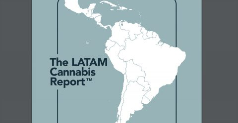 Report Predicts $13 Billion Latin American Cannabis Market by 2028