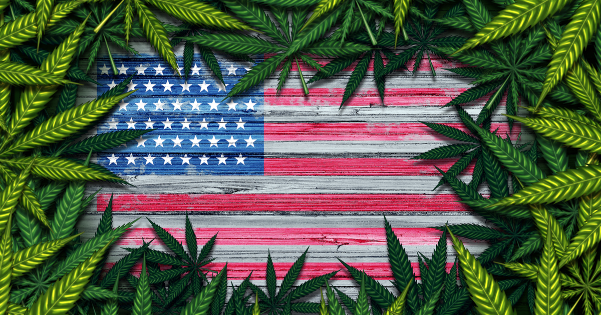 The Marijuana Midterms: Ballot Initiatives in Four States + Plenty of Hot Races