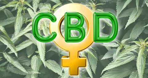The CBD Revolution Is Being Led by Women