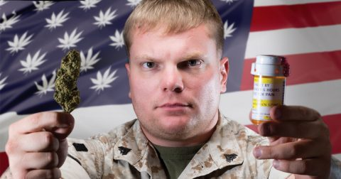 American Veterans Desperately Need Legal Access to Marijuana